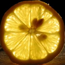 lemon_slice_with_seeds