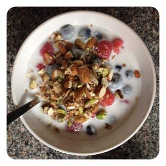 paleo cereal2