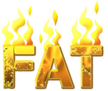 burn-fat.png